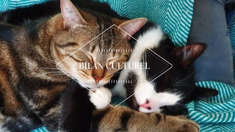 Bilan Culturel Juin 2020